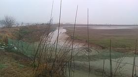 湖北省武汉市市辖区76亩综合养殖用地转包