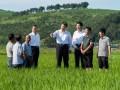 十九大重磅消息!事关8亿农民,第二轮土地承包到期后再延长三十年!