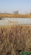 甘肃省酒泉市肃州区50亩水产养殖用地转包