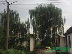 驻马店汝南县年出栏3000头生猪家庭养殖庄园转让