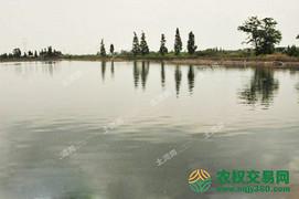 出租确山县21亩水库环境优美设施齐全