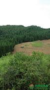 湖北恩施利川市文斗乡耕地,林地,荒地一共2000亩