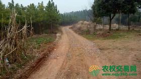 唐街:湖北当阳300余亩山林120万售