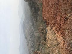 湖北省随州市随县长岗镇转让500亩灌木林地