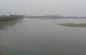 江西省九江市永修县出租900亩坑塘