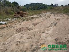 湖北省武汉市黄陂区50亩旱地转让