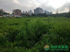 湖北省武汉市新洲区22.5亩工业用地招拍挂
