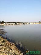 湖北省孝感市应城市500亩其它养殖用地转让