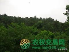 湖北省谷城县16601.92亩天然混交林股权或林地经营权转让