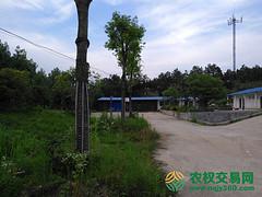 湖北省黄冈市团风县2000亩休闲旅游类农场转让