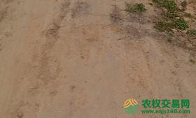 山西运城市闻喜县11.2亩水浇地转包、转让