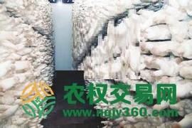 福建省漳州市漳浦县50亩食用菌种植用地出租