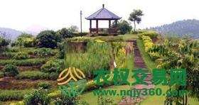 福建省漳州市芗城区80亩综合种养农场出租