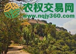 福建省漳州市龙文区31亩综合种养农场出租