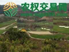 福建省漳州市南靖县200亩综合种植农场出租