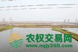 全国亩水产养殖用地出租