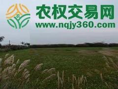 福建省漳州市龙海市30亩综合种植农场出租