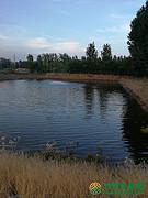 北京市市辖区通州区张家湾镇13亩湖泊转让