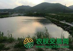 吉林省延边朝鲜族自治州龙井市15亩坑塘出租
