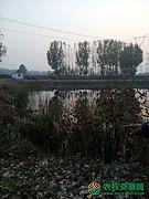北京市顺义区牛栏山地区12亩水产养殖用地出租