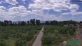北京市市辖区昌平区南口地区100亩果园转让