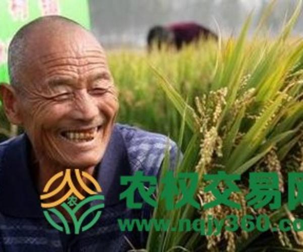 中国农民丰收节放假吗?中国农民地位提高!