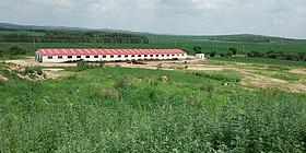 内蒙亩畜牧养殖用地转让