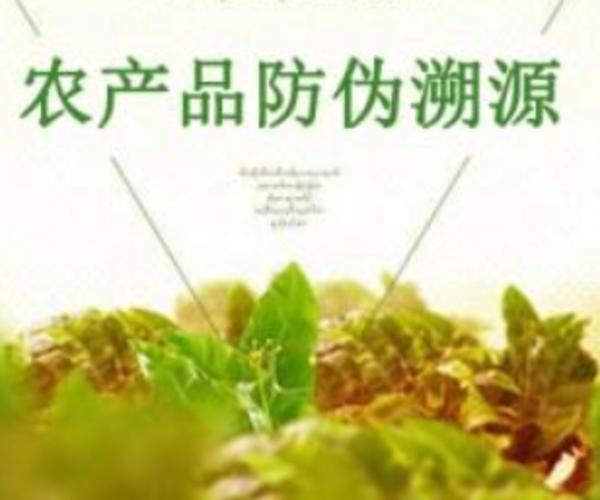 区块链+农业溯源系统开发,革新生产模式